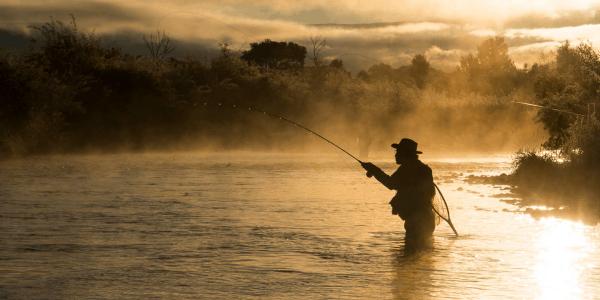 Melhores Varas de Pesca