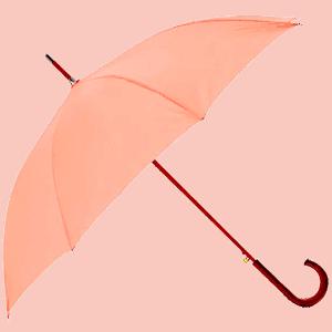 Guarda Chuva Elegante e Moderno