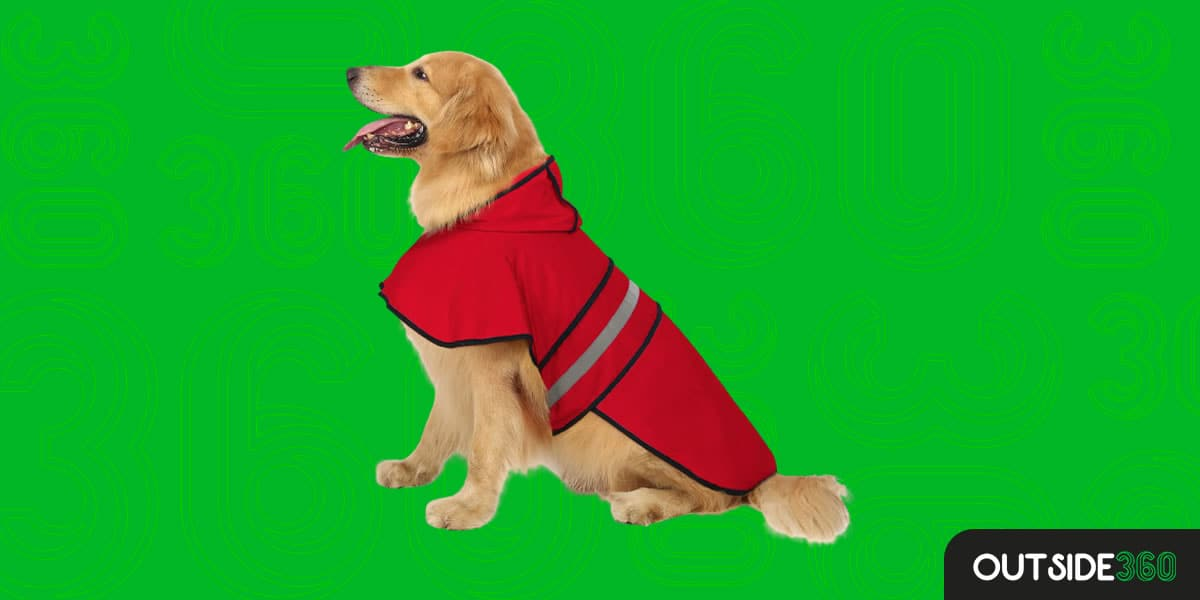 Capa de Chuva para Cachorros – HDE